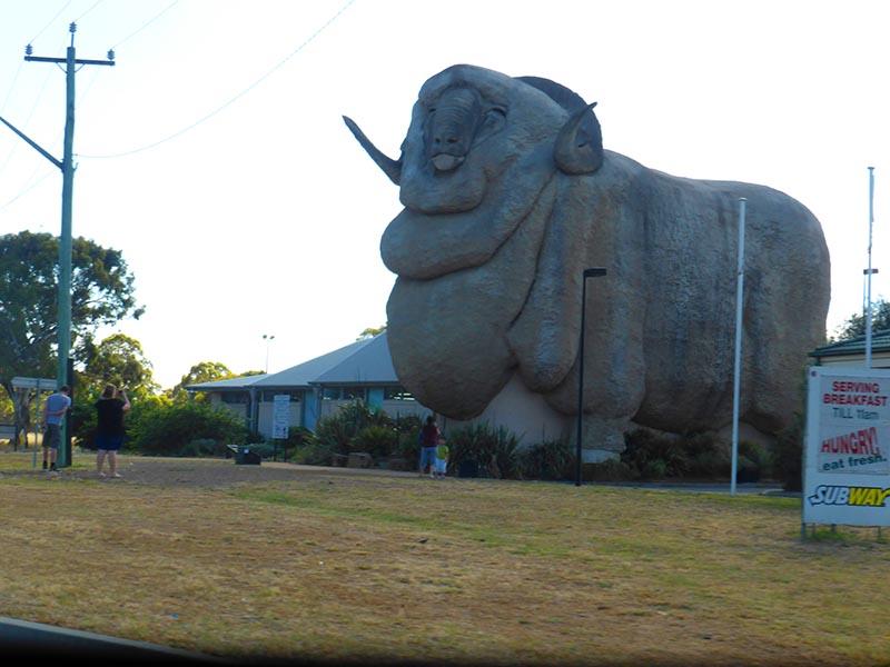 goulburn- australia